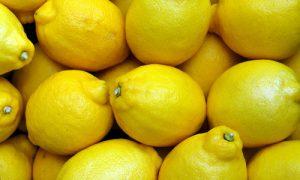 Terpeni nella cannabis - d-limonene
